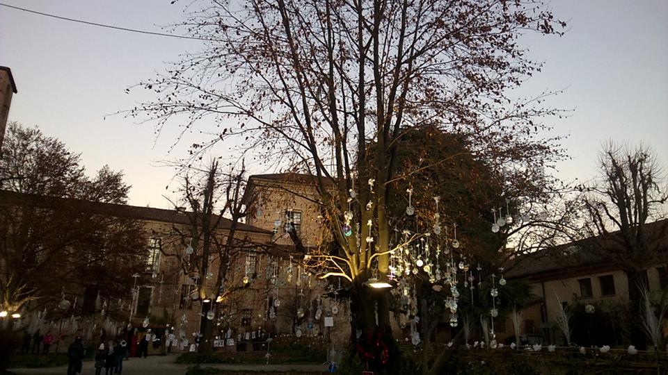 Inaugurato il giardino d 39 inverno il carmagnolese - Il giardino d inverno ...