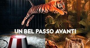 """Campagna LAV """"Un bel passo avanti"""" il 3 e 4 dicembre a Carignano e Carmagnola"""