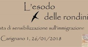 L'esodo delle rondini: conoscere l'immigrazione