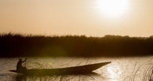allevamento ittico a Ronkh