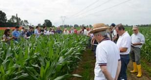 Innovazione in agricoltura: una giornata dimostrativa sul campo