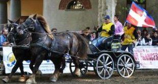 Mais e Cavalli: a Vigone l'accoppiata vincente