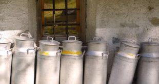 contenitori latte