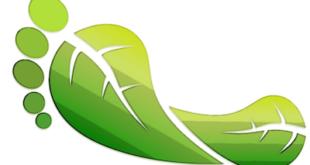 concorso scolastico sulla mobilità sostenibile scadenza prorogata