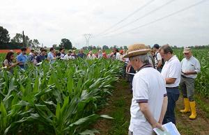 Agricoltura Sperimentale Campo Demo
