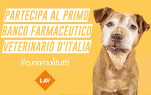 curiamoli tutti banco farmaceutico veterinario LAV