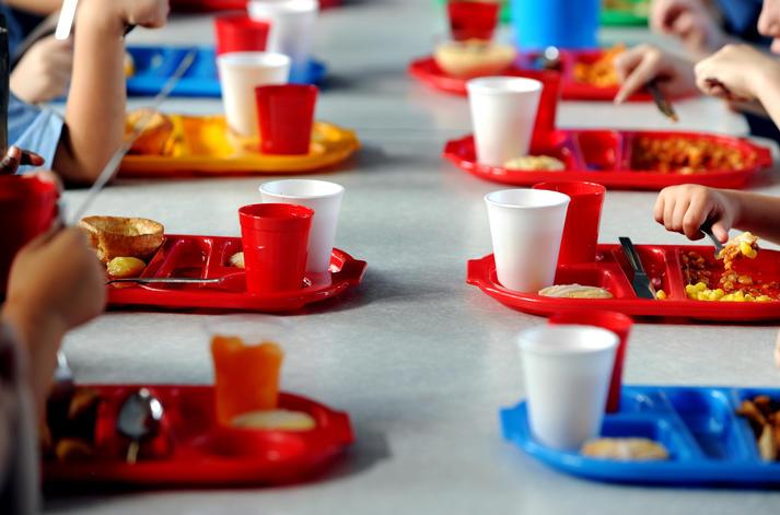mensa scolastica Poirino - foto di Paul Heyes