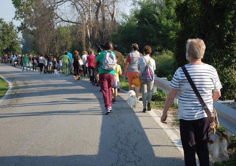 La Passeggiata a sei zampe 2020 a Carmagnola [foto LAV Carmagnola - Facebook]