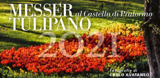 calendario avataneo 2021 messer tulipano
