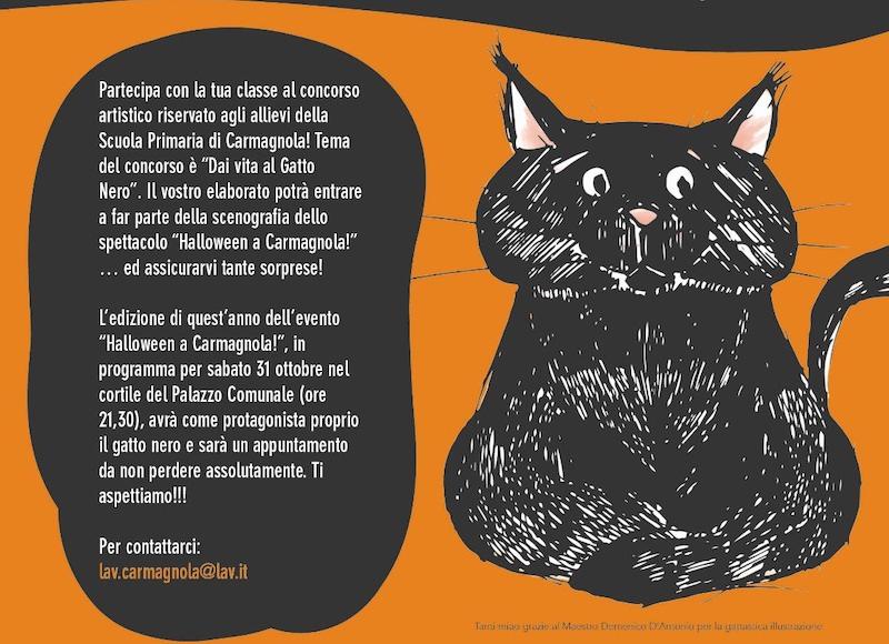gatto nero carmagnola