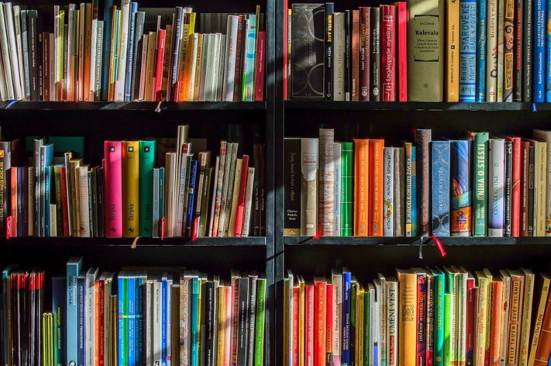 biblioteca villastellone