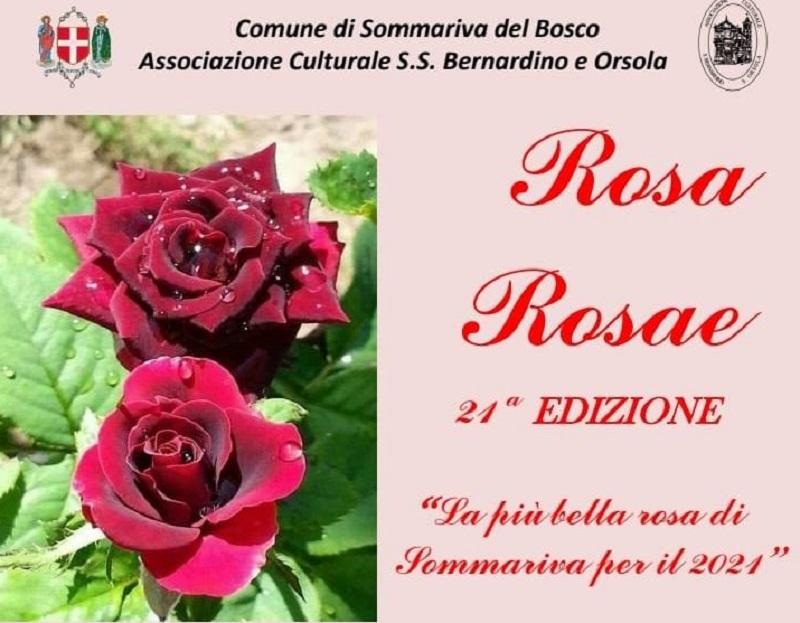 concorso rosa rosae Sommariva