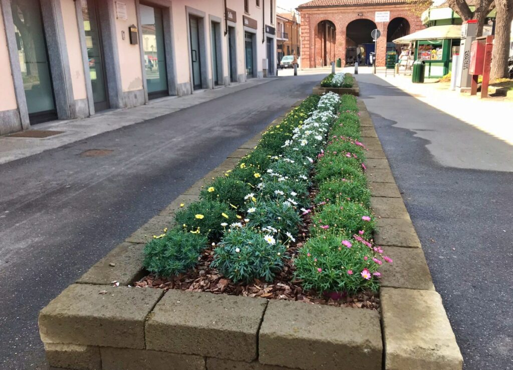 aiuole fiorite a Carmagnola